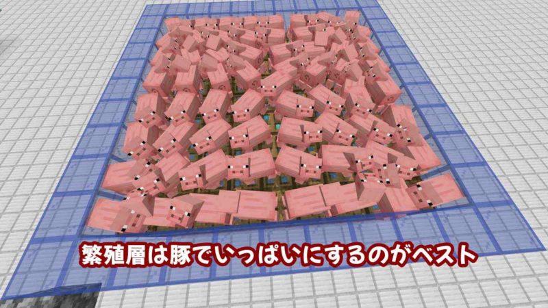 繁殖層は豚でいっぱいにするのがベスト