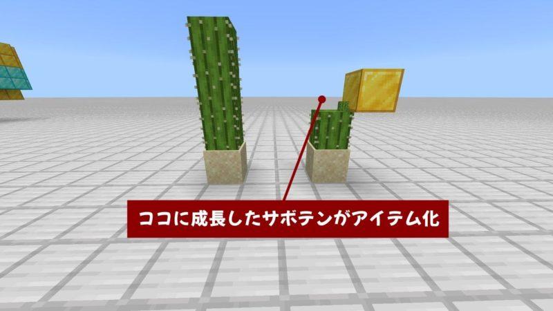 成長した先のとなりにブロックがあるとアイテム化