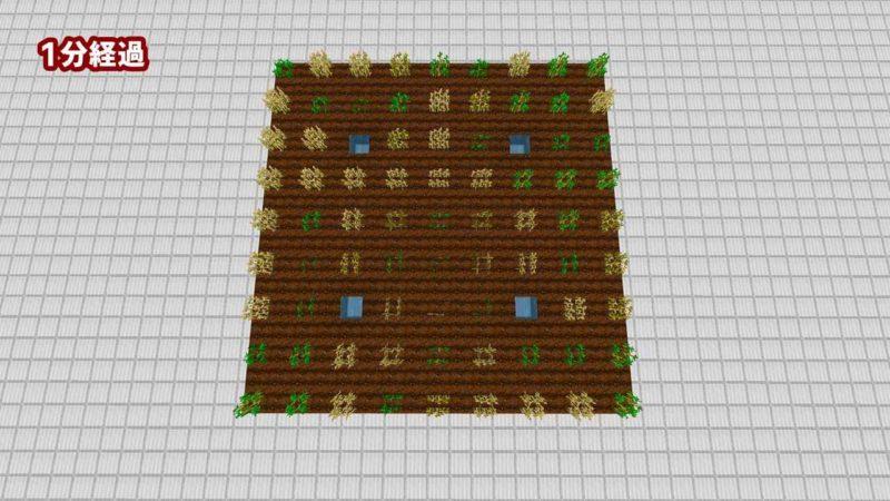 同じ作物を1ブロック離して植える:1分経過