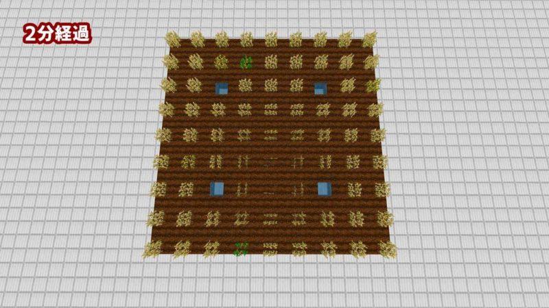同じ作物を1ブロック離して植える:2分経過