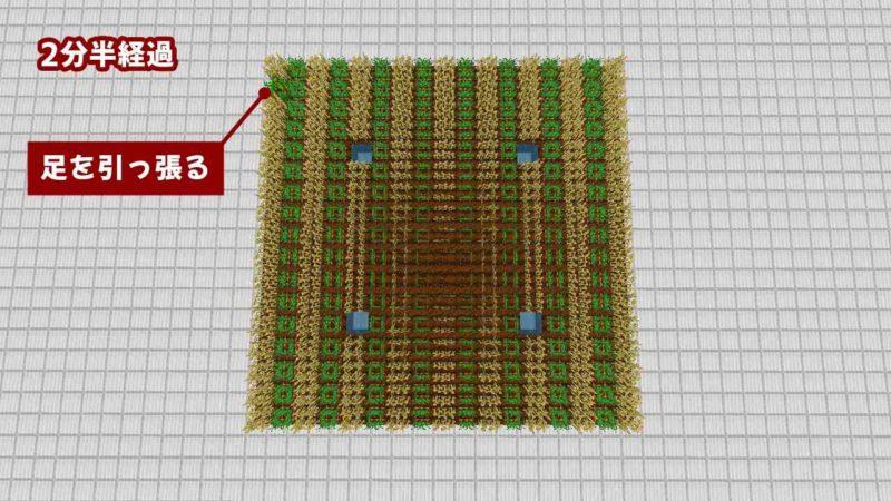 違う作物を1列ごとに植える:2分半経過
