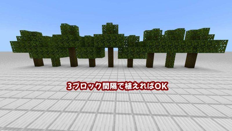 3ブロック間隔で植えるジャングルの木