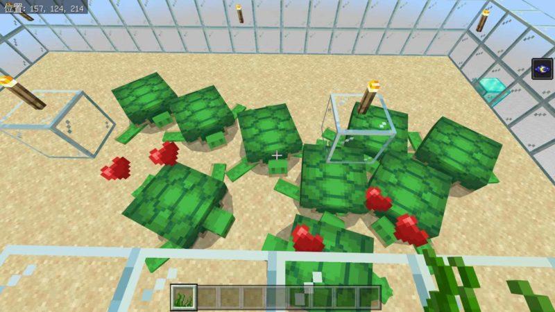 海草で繁殖モード