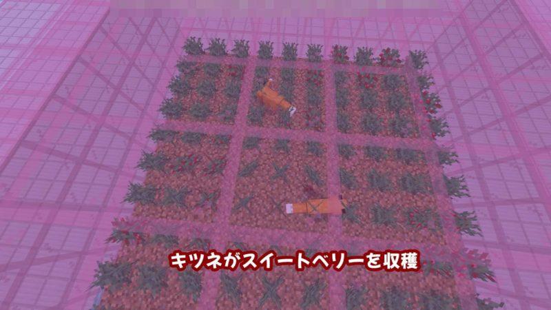 キツネがスイートベリーを収穫