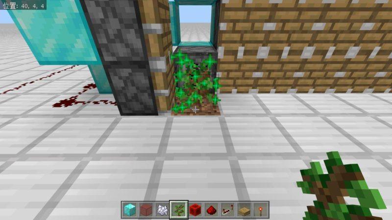 骨粉を受ける樫の苗木