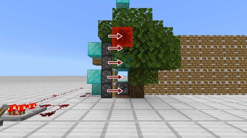 木に成長と同時に押し出し